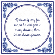 If the only way for me, to be with you is in my dreams, then let me dream forever. (7.95 EUR)