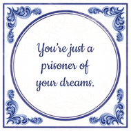 You're just a prisoner of your dreams. (7.95 EUR)